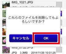 delete_file3